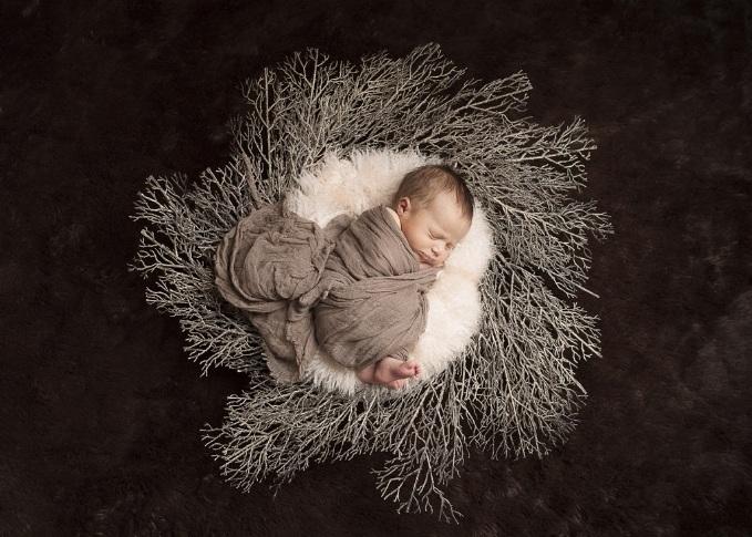newborn photography ideas 7
