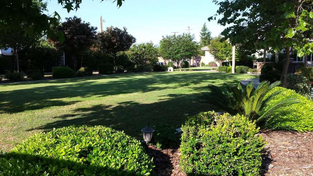 Leaning Oak Ranch Yard 12-min