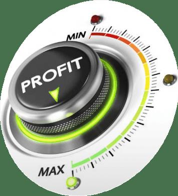 Maximize-Profit-Opportunities-min