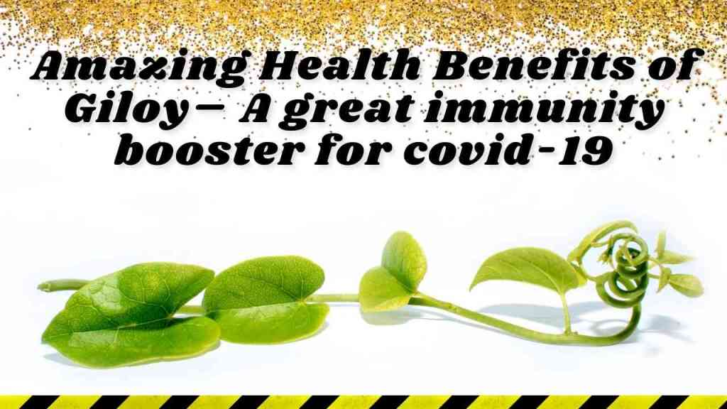 Amazing Health Benefits of Giloy – A great immunity booster for covid-19