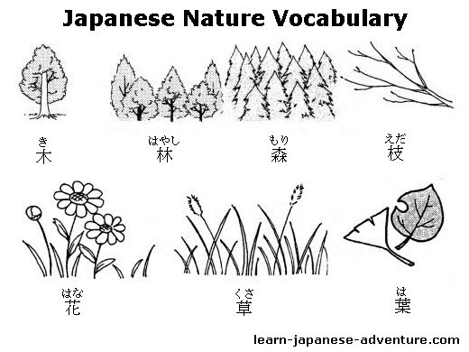 Japanese Nature Words and Vocabulary