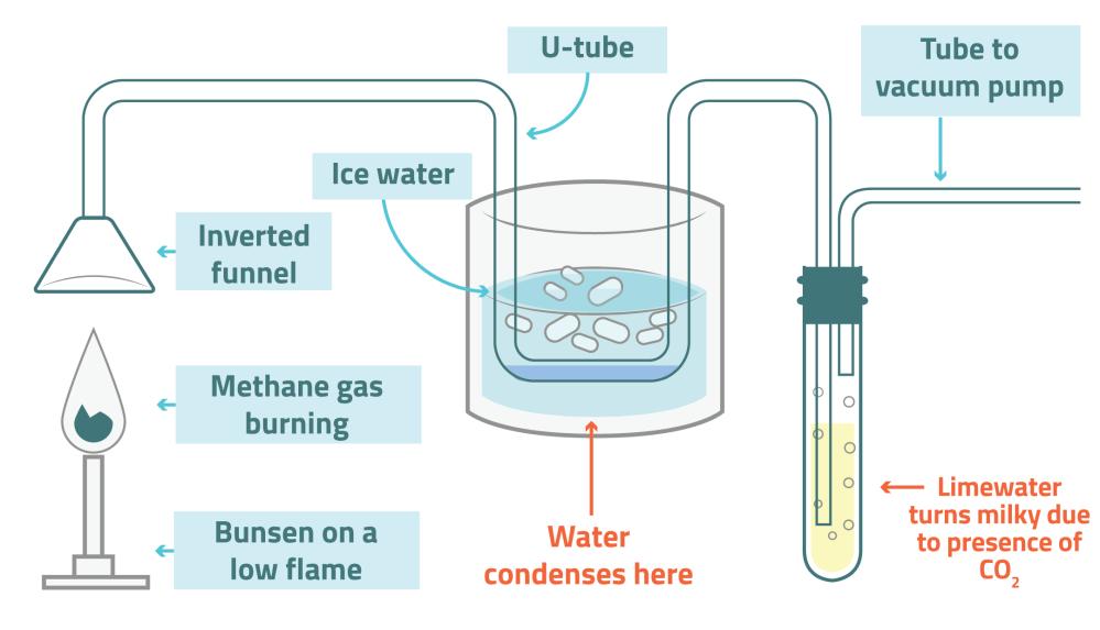 medium resolution of science experiment diagram download wiring diagrams eddie van halen wiring diagram david gilmour wiring diagram