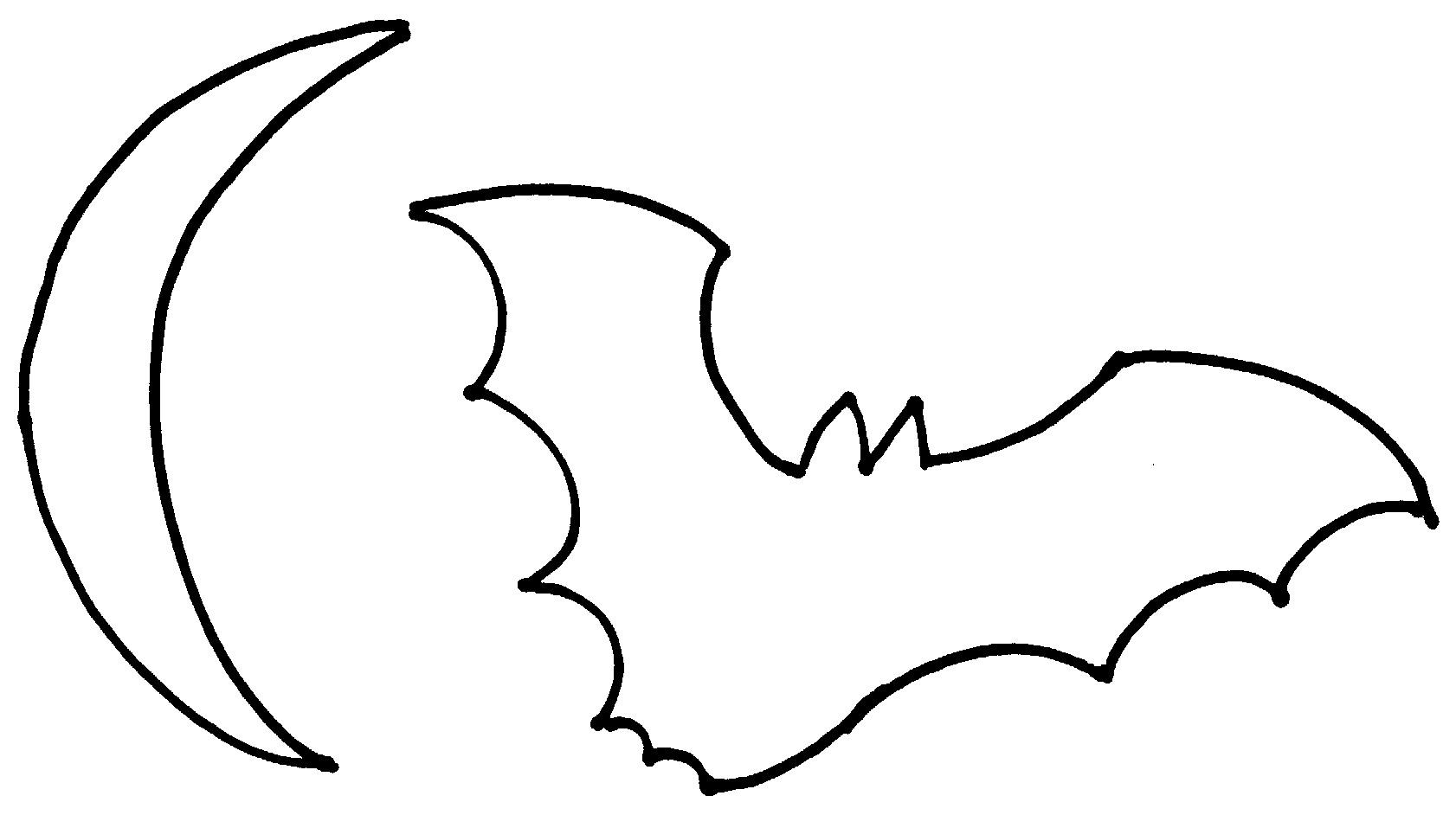 Bat Fact Fun
