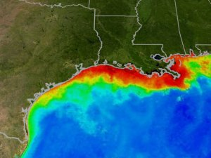 Image courtesy of the NASA Mississippi Dead Zone web site.