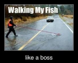 walkin_my_fish_caption