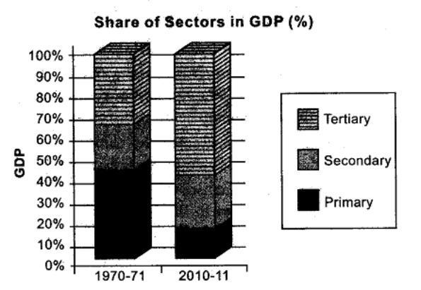 SST CBSE Class 10 Economics Sectors of Indian Economy HOTS