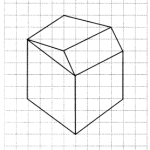 NCERT Solutions for Class 7 Maths Chapter 15 Visualising Solid Shapes Ex 15.2 12