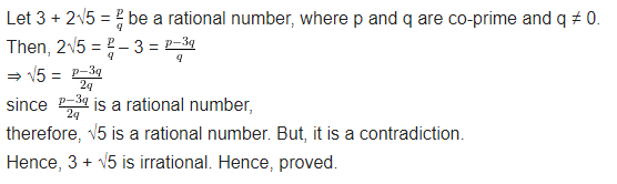 Class 10 Maths Chapter 1 Real Numbers NCERT Solutions Ex 1.3 Q2
