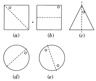 NCERT Solutions for Class 7 Maths Chapter 14 Symmetry 5