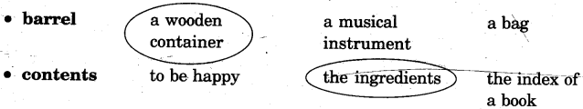 NCERT Solutions for Class 5 English Unit 5 Chapter 2 Rip Van Winkle 2