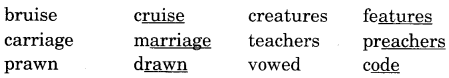NCERT Solutions for Class 5 English Unit 8 Chapter 2 The