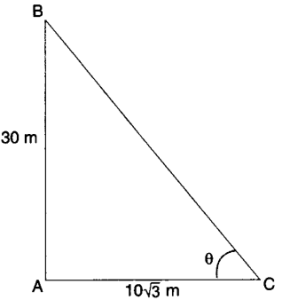 Applications of Trigonometry Height and Distance Class 10 Q 8 i