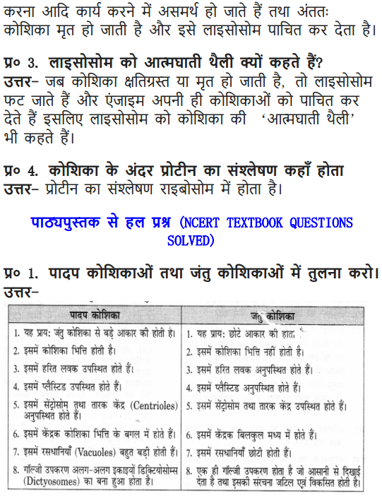 NCERT Solutions for Class 9 Science Chapter 5 The Fundamental Unit of Life Hindi Medium 4