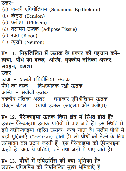 NCERT Solutions for Class 9 Science Chapter 6 Tissues Hindi Medium 8