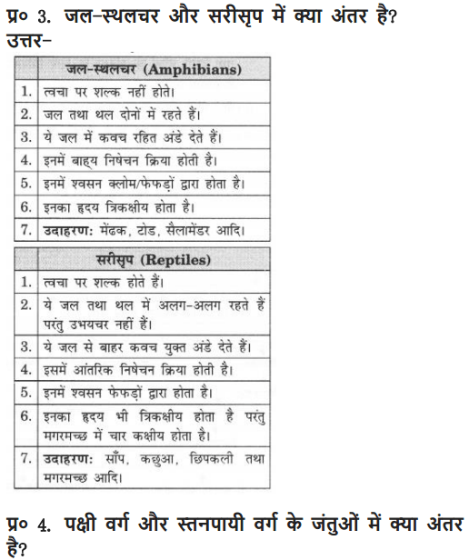 NCERT Solutions for Class 9 Science Chapter 7 Diversity in Living Organisms Hindi Medium 8