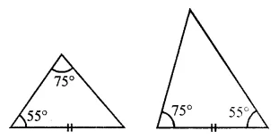 ML Aggarwal Class 7 Solutions for ICSE Maths Chapter 12 Congruence of Triangles Objective Type Questions 18