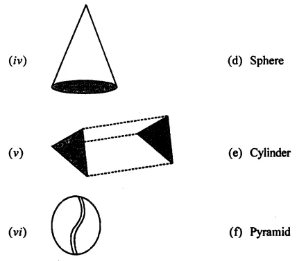 ML Aggarwal Class 7 Solutions for ICSE Maths Chapter 15 Visualising Solid Shapes Ex 15.1 2