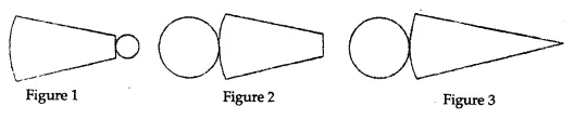ML Aggarwal Class 8 Solutions for ICSE Maths Chapter 17 Visualising Solid Shapes Objective Type Questions 21