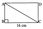 Maharashtra Board Class 10 Maths Solutions Chapter 2 Pythagoras Theorem Problem Set 2