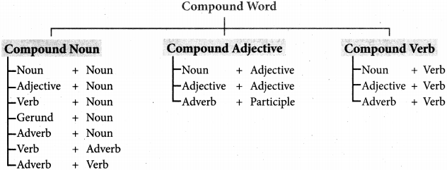 Tamilnadu Board Class 10 English Vocabulary Compound Words 1