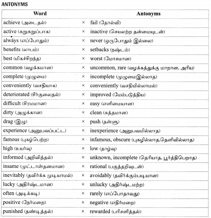 Tamilnadu Board Class 9 English Solutions Prose Chapter 1 Learning the Game - 18