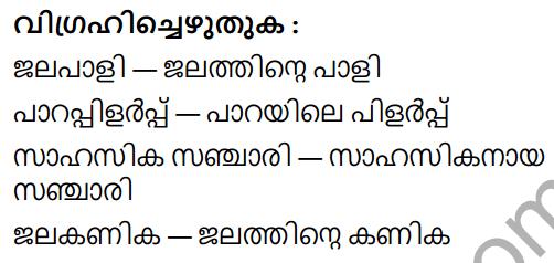 Adisthana Padavali Malayalam Standard 9 Solutions Unit 1 Chapter 3 Vellachattattinte Idimulakkam 8