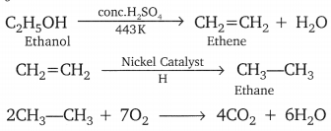Carbon and its Compounds Class 10 Important Questions Science Chapter 4, 58