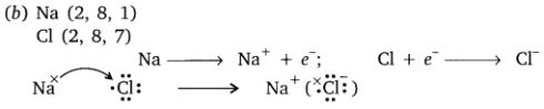Metals and Non-metals Class 10 Important Questions Science Chapter 3, 19
