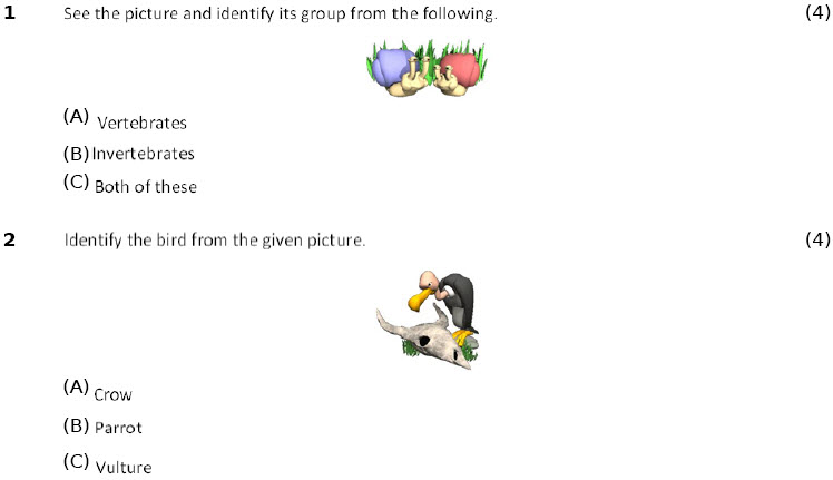class 4 science worksheets adaptations how animals survive