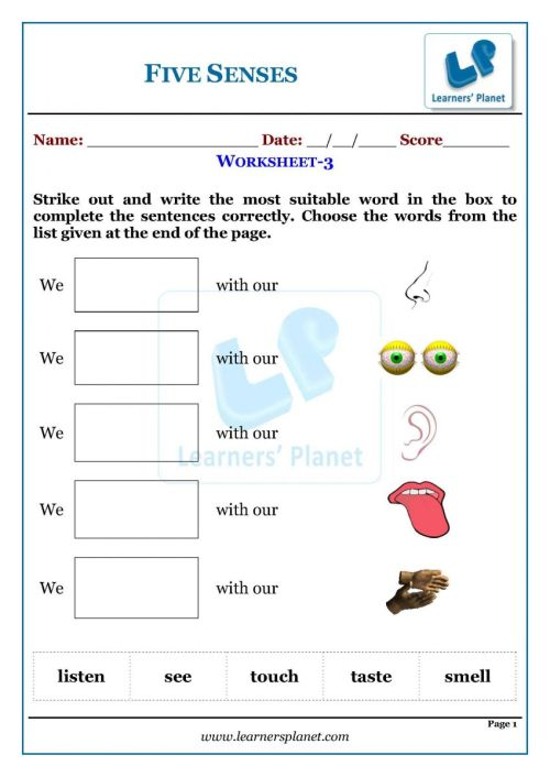 small resolution of The five senses worksheets for kids