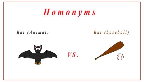 Homonyms, Homophones, Homographs, Synonyms And Antonyms