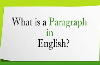 What is Paragraph