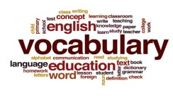 The Top 5 Vocabulary Books for English Learners