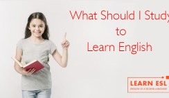 What Should You Study to Learn English