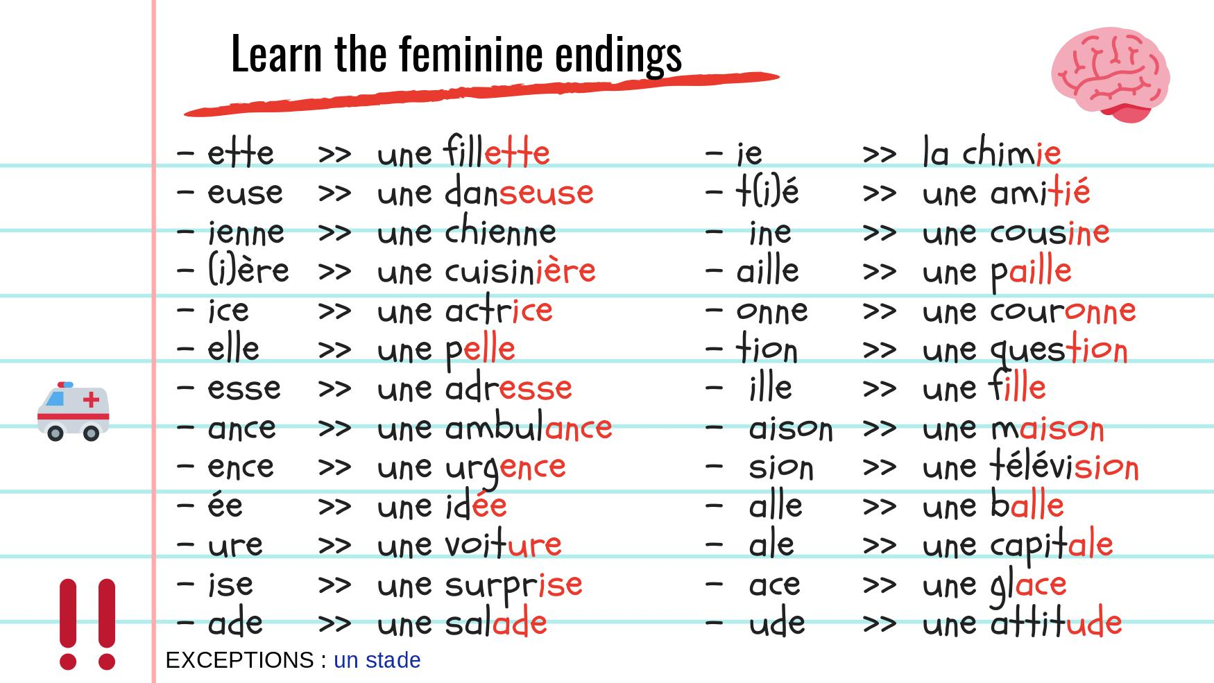 4 Hacks To Visually Identify The Gender Of French Words