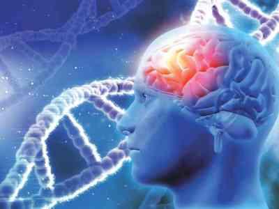 genes dna