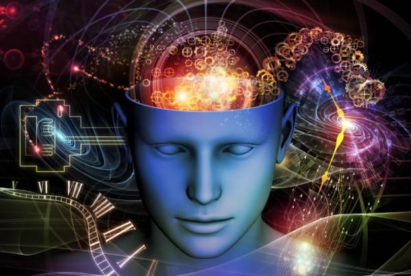 brain potential
