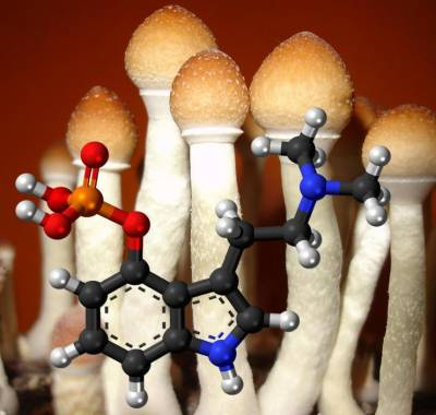 psilocybin mushrooms benefits