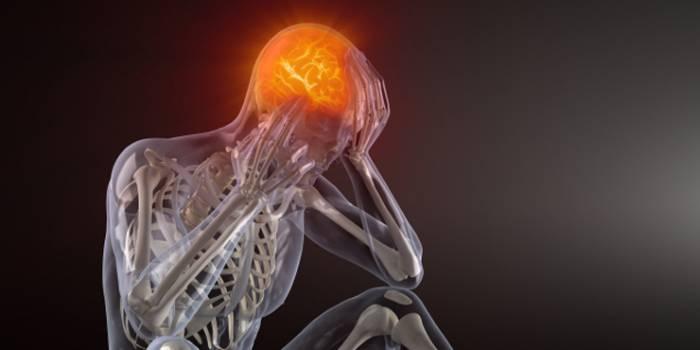 pain neuroscience