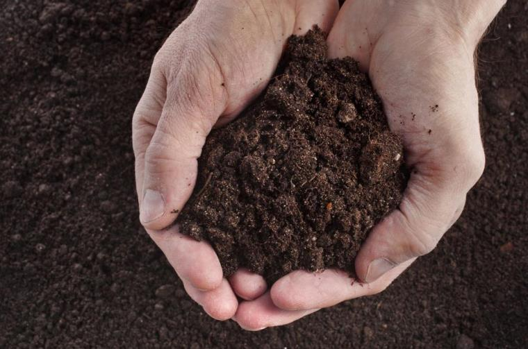 New Super Antibiotic Found In Dirt Can Kill Drug Resistant Bacteria Learning Mind