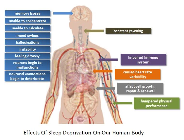 This Is How Lack of Sleep Affects Your Body Functions