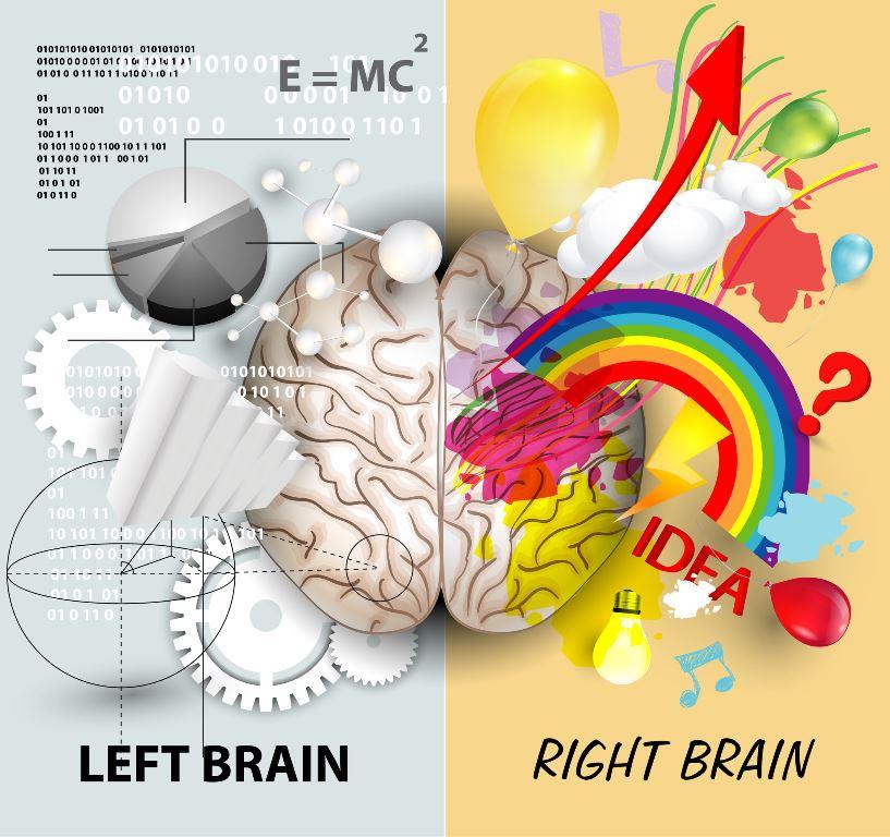 train your brain hemispheres