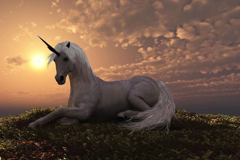 skull shows last unicorn roamed the earth