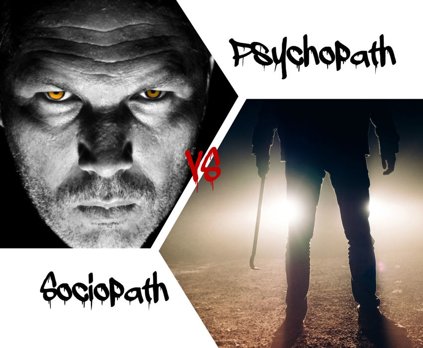 the difference between a psychotic and a psychopath person What is the difference between schizophrenic and psychopathic update cancel answer wiki what is the difference between a psychopath and psychotic what is the biggest difference between a normal person and a psychopath.