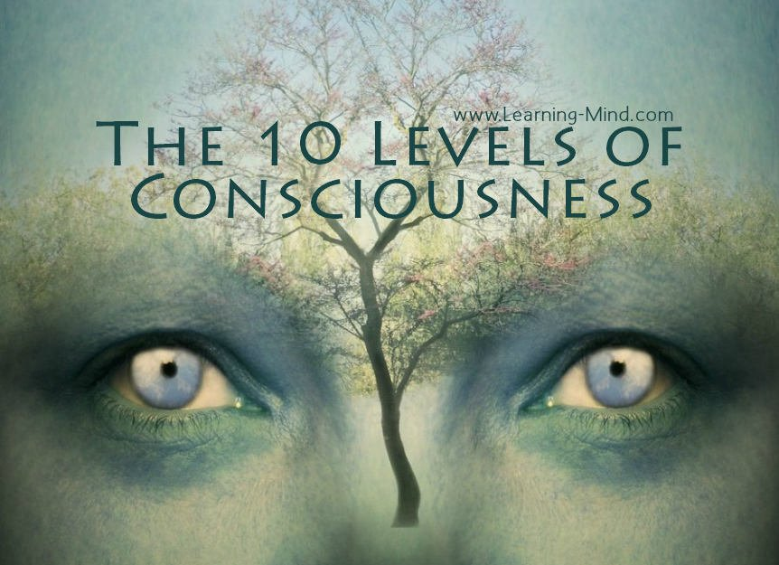 10 Levels Of Consciousness Which One Are You At Learning Mind