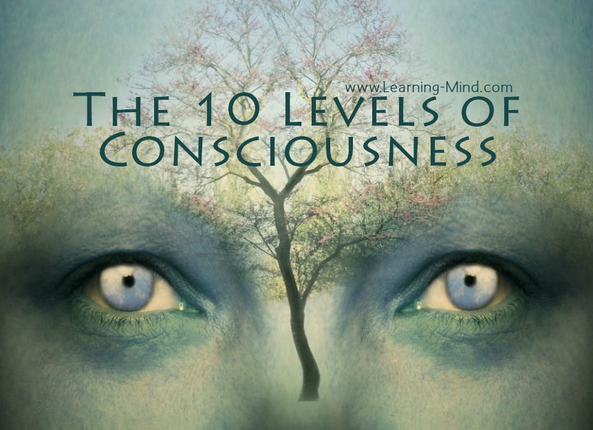 what are the 4 levels of consciousness
