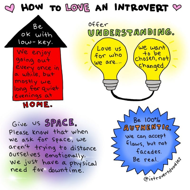 what is introversion