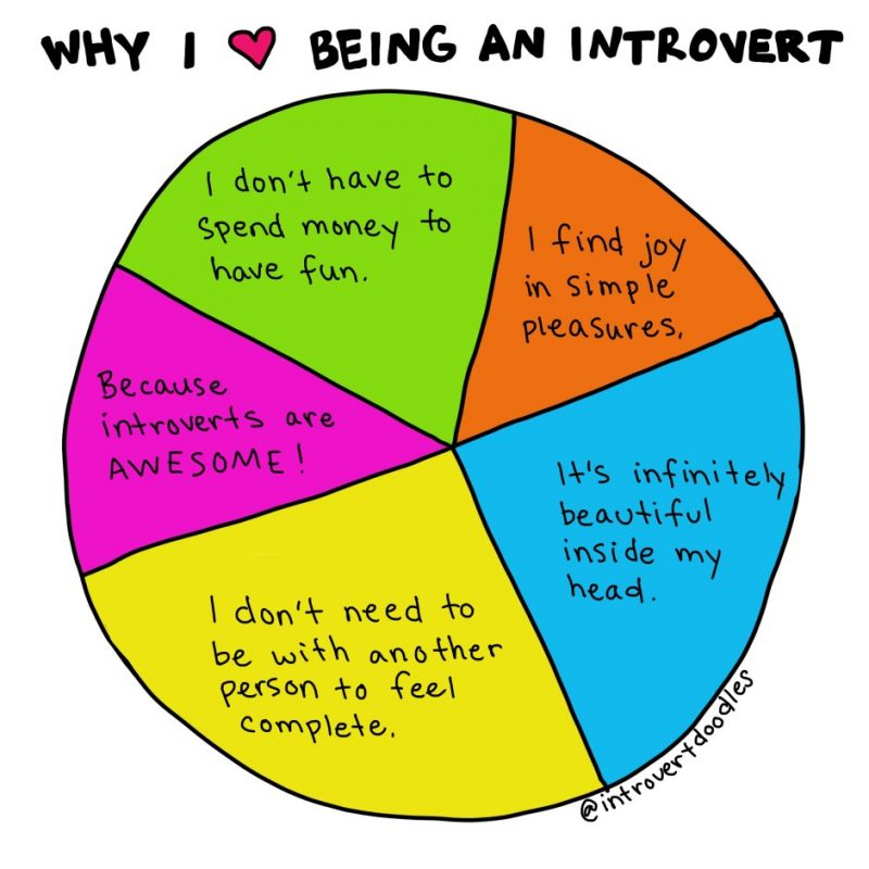 what is introversion illustrations