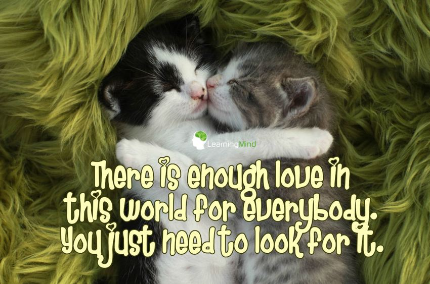 There is enough love in this world for everybody. You just need to look for it.
