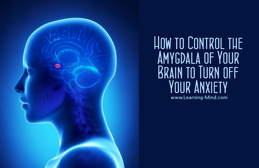how to turn off your amygdala